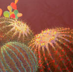 Barrel Cactus #6 Contemporary Cacuts Art By Sharon Weiser