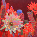 Desert Red,flower catus, contemporary
